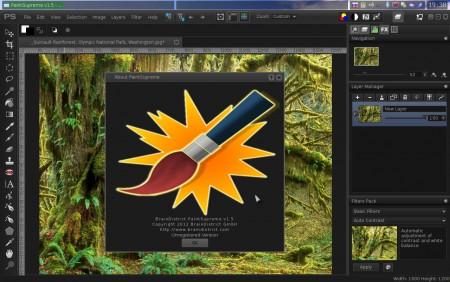 paintsupreme.jpg