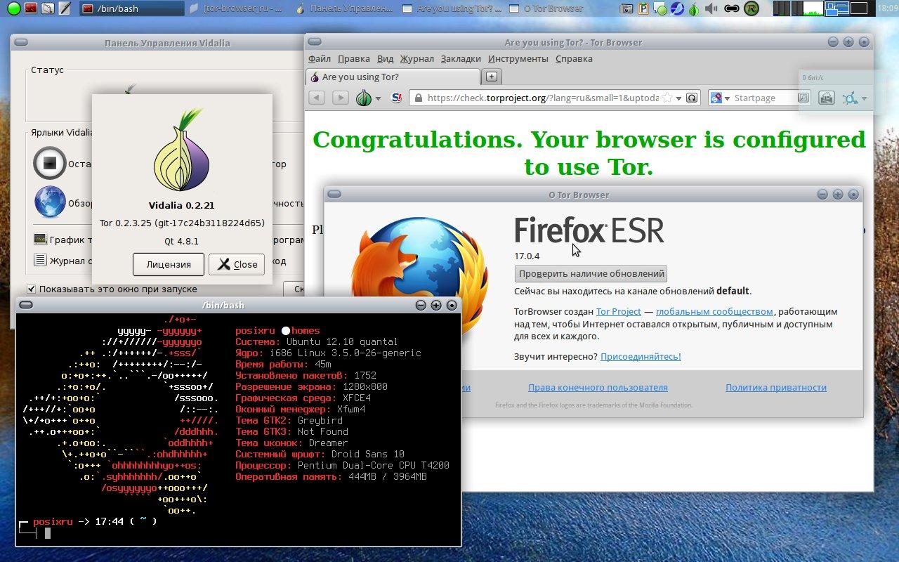 tor browser vidalia скачать hyrda