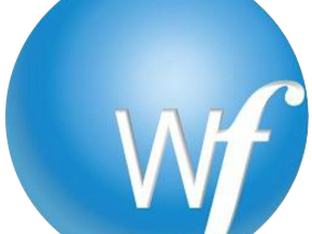 Wordfast Pro (WFP)