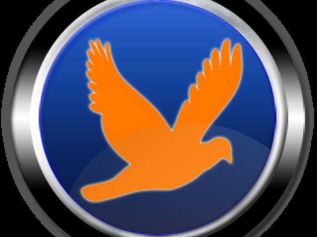 Roxbird Download Manager (RoxBird)