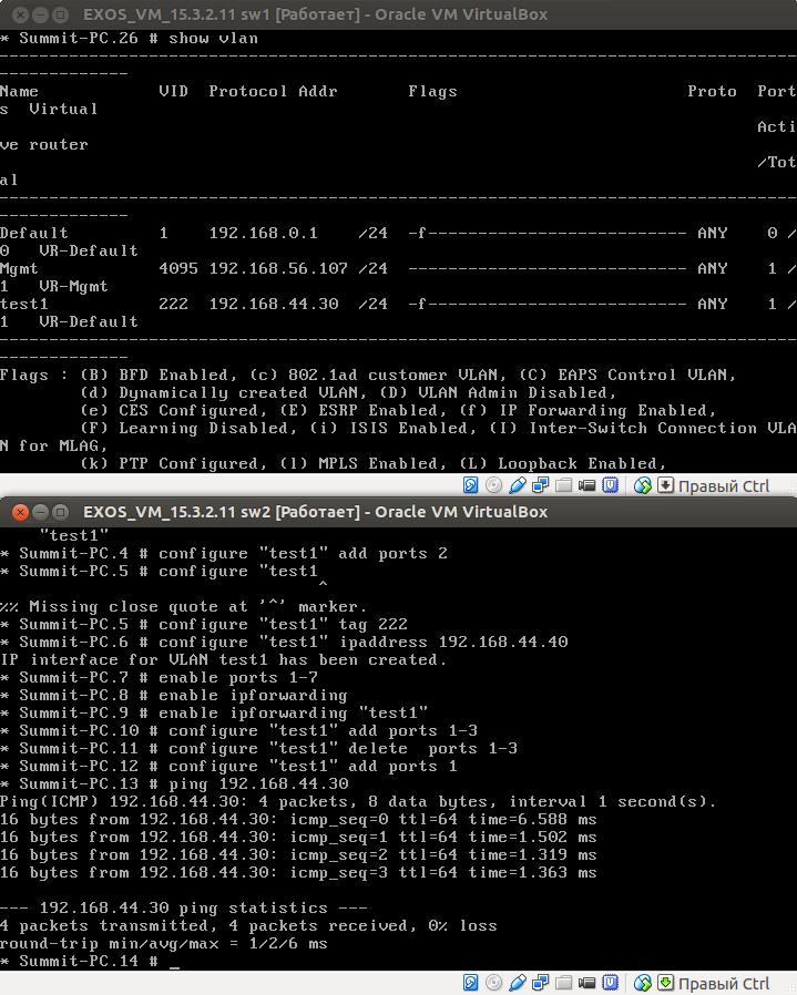 Пингуем виртуальный свитч Extreme Networks и смотрим на VLAN Mgmt