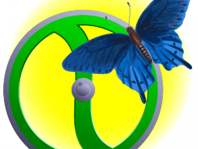 Эффект бабочки (The Butterfly Effect / TBE)