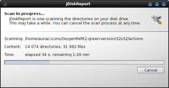 JDiskReport