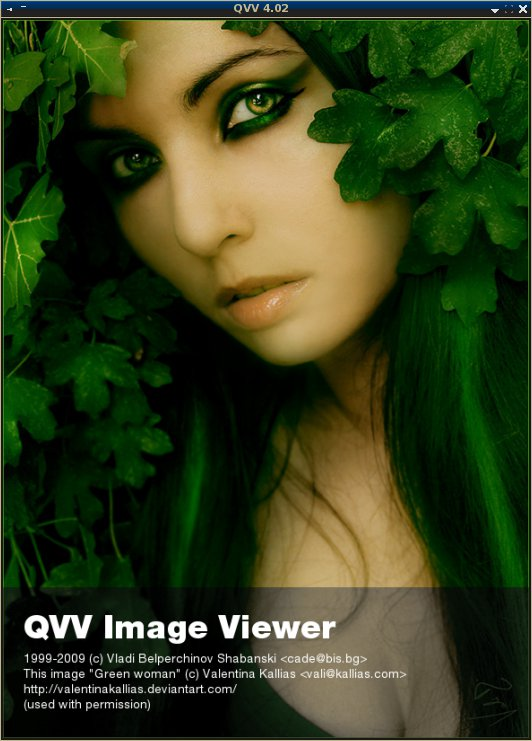 QVV Image Viewer and Browser