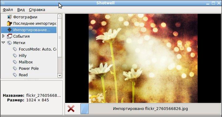 ShotWell - менеджер фотографий, импорт фотографий