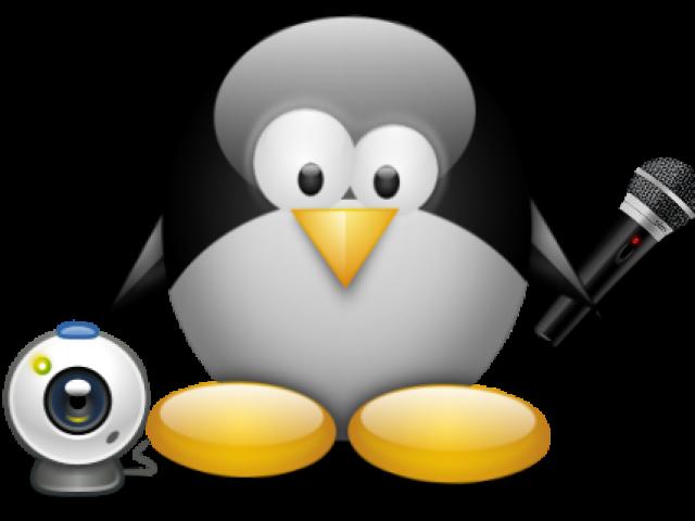 GUVCViewer (GTK+ UVC Viewer)