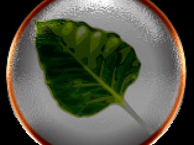 Bodhi Linux 2.1.0