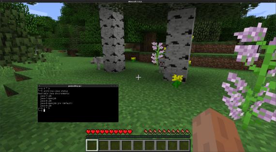 minecraft.png