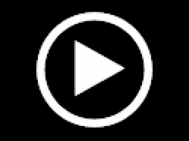 Pidgin Embedded Video